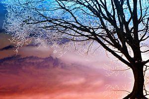 Winterfantasie