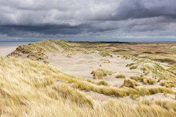 Amelander duinen op het Oerd - Natuurlijk Ameland van Anja Brouwer Fotografie