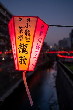 Lanterne à la rivière Meguro sur Mickéle Godderis