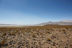 Farallon de Tara, het plateau met uitzicht op het zoutmeer, het natuurreservaat Salar de Tara, San P