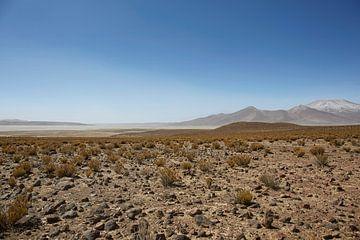 Farallon de Tara, das Plateau mit Blick auf den Salzsee, das Naturschutzgebiet Salar de Tara, San Pe von Tjeerd Kruse