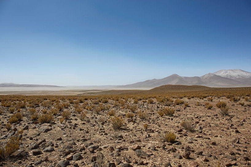 Farallon de Tara, het plateau met uitzicht op het zoutmeer, het natuurreservaat Salar de Tara, San P van Tjeerd Kruse