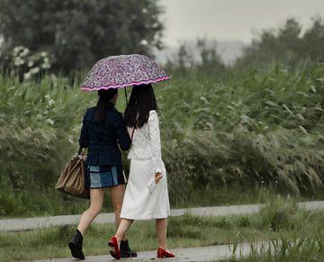 De paraplu van Hilbrand P