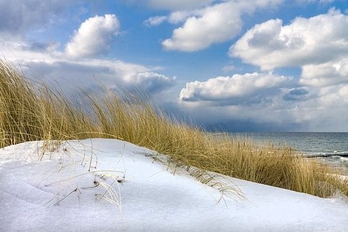 Winter time on shore of the Baltic Sea van Rico Ködder