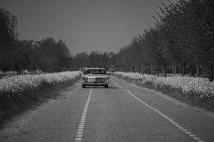 Niederländisches Dorf 2020, Auto auf der Straße. von Sanne Van der avoird