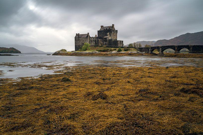 Eilean Dolan Castle, Schotland van Ab Wubben