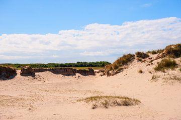 Dunes sur Brian Morgan