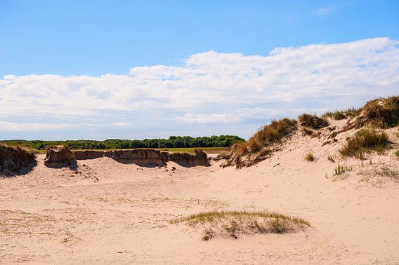 Dunes van Brian Morgan