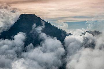 Bergkam met bomen op Lombok van