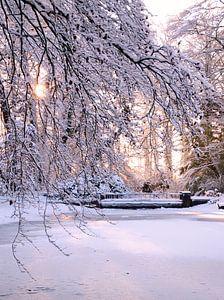 zonnige sneeuw