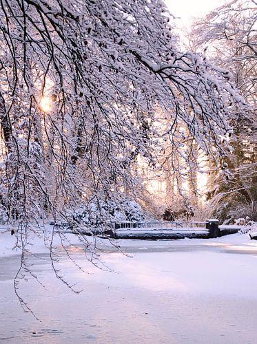 zonnige sneeuw van