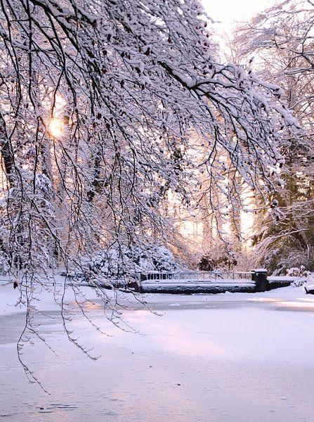 zonnige sneeuw van Marianne Bras
