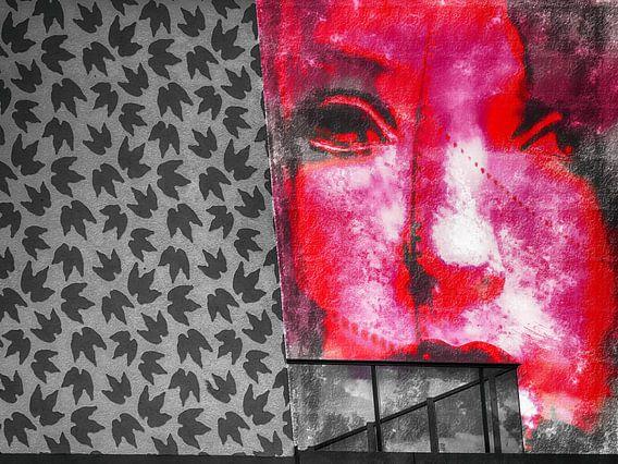 The pink face and the balcony van Gabi Hampe