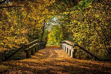 Een brug in de herfst kleuren van Michel Swijgman