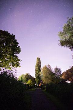Horw bei Nacht van Severin Pomsel