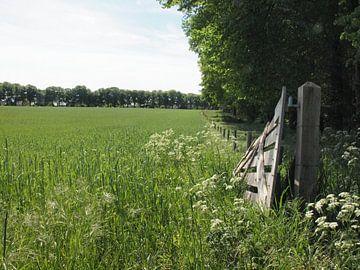 Openstaand hek naar akkerland van Annie Lausberg-Pater