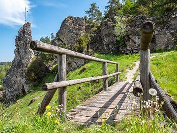 Uit in Frans Zwitserland in de zomer van Animaflora PicsStock