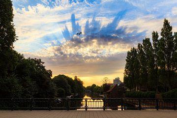 Reiger zonsopkomst Amsterdam van Dennis van de Water