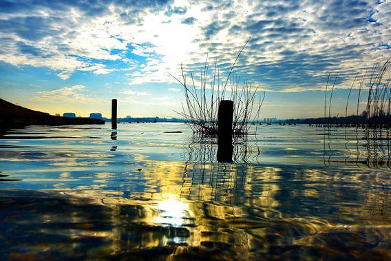 Reflectie van de Lentezon