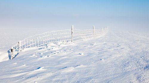 Koud, sneeuw en mist van