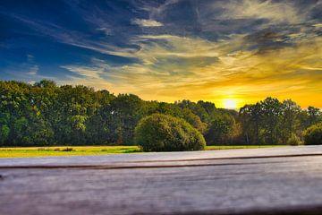 Dombergheide Turnhout Vennegebied van Js photography