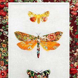 Vlinders Vintage van Jacky Gerritsen