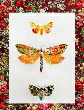 Vlinders Vintage van Jacky