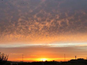 Sunny clouds von