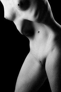 Körperlandschaftsfotografie einer nackten Frau mit einem schönen Körper #0090 von william langeveld