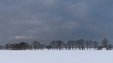 a minimalistic winter landscape van Koen Ceusters