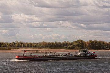 Schifffahrt auf dem Rhein - Synthese