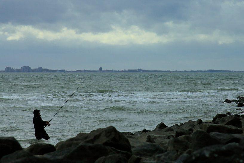 Studie: De Kaloot, Borssele - Zeeland von Patrice Domenique Troost