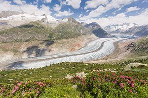 Uitzicht op de Aletschgeltscher