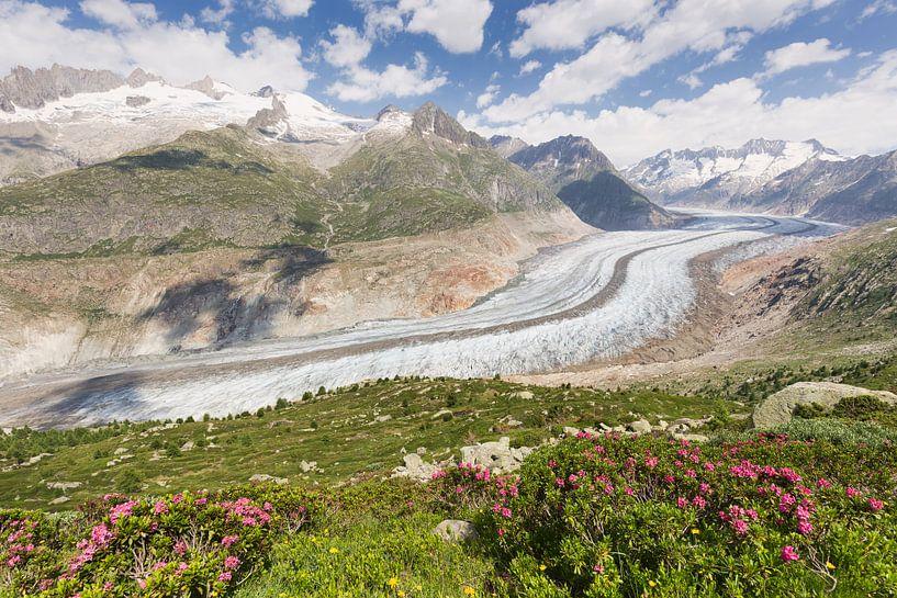 Uitzicht op de Aletschgeltscher van Rob Kints