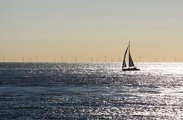 Zeilbootje op de noordzee van MSP Canvas