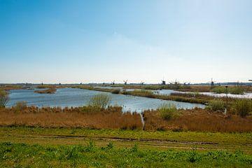 Moulins à vent de Kinderdijk sur Brian Morgan