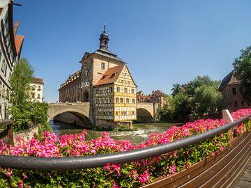 Het oude stadhuis van Bamberg van Animaflora PicsStock