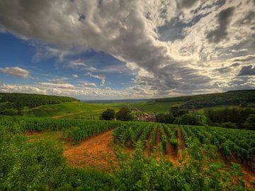De wijnvelden van de Côte de Beaune, Côte-d'Or, Frankrijk. von Jan Plukkel