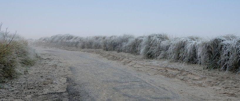 Winter in Zeeland van Ans Janssen