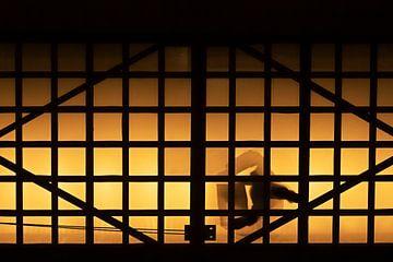 Silhouet op een glazen loopbrug