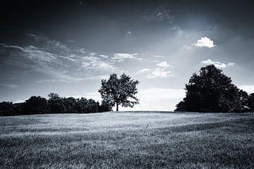Heuvelachtig Zwart Wit Landschap van Jan Brons