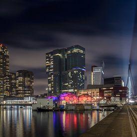Rijnhaven Rotterdam van Patrick Herzberg