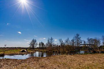 Zonnestralen in Nationaal park de Wieden van Dafne Vos