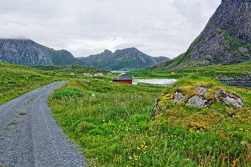Ein Sommerabend auf der Insel Langøya von Gisela Scheffbuch