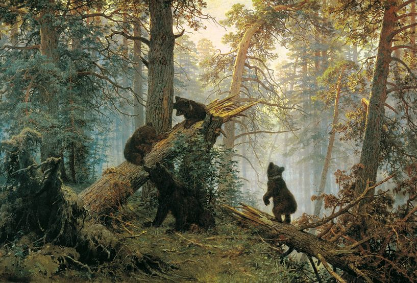 Clumsy Bear!  van Marieke de Koning