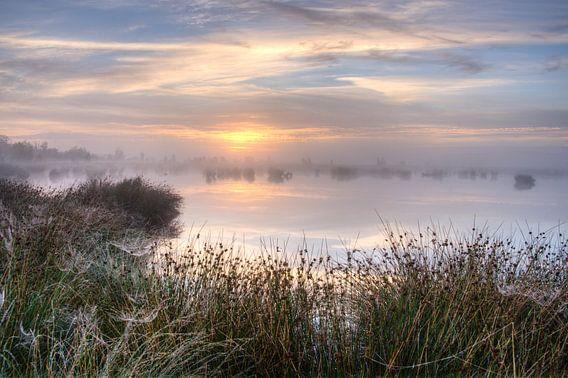 Mistige zonsopkomst boven Dwingelderveld