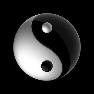 Taijitu Yin Yang Symbool van Chrisjan Peterse