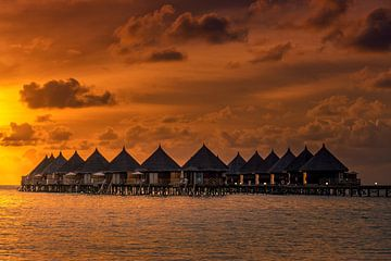 Bungalows op de Malediven van Markus Stauffer