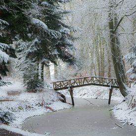 Winters tafereel in het bos van Margreet Piek