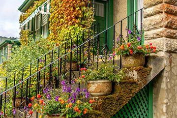Farbenfrohe  Pflanzen und Blumen auf einer Treppe im Garten Butchart Gardens, Kanada von Jille Zuidema